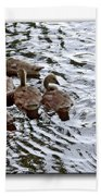 Young Geese Beach Towel