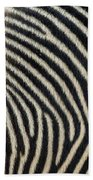 Zebra Caboose Beach Towel