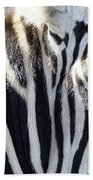 Zebra Face  Beach Towel