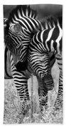 Zebra Hug 2 Beach Towel