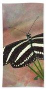 Zebra Longwing Butterfly-3 Beach Towel