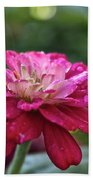 Zinnia Quenched Beach Towel