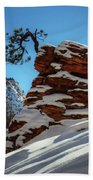 Zion National Park In Winter Beach Towel