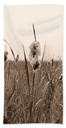 Broadleaf Cattail 1 Beach Sheet