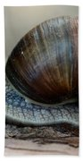 Burgundy Snail Beach Towel