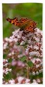 Comma Butterfly Beach Towel
