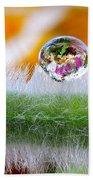 Drop Of Rain On The Pod Lupine Beach Towel
