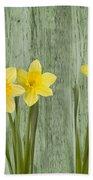Fresh Spring Daffodils Beach Sheet