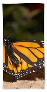 Monarch 2 Beach Towel