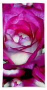 Rose Explosion Beach Towel