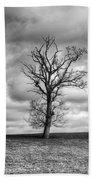 Single Tree Beach Sheet