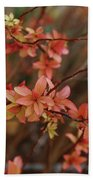 Spirea 1280 Beach Towel
