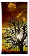 '' Sunset Tree ''  Beach Towel