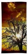 '' Sunset Tree ''  Beach Sheet