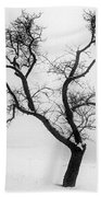 Tree In The Snow Beach Towel