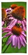 01 Bee And Echinacea Beach Towel