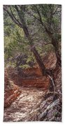 030715 Palo Duro Canyon 066 Beach Towel