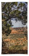 030715 Palo Duro Canyon 092 Beach Towel