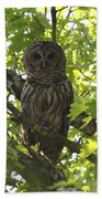 0313-010 - Barred Owl Beach Towel