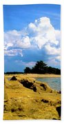 05222012101 Beach Towel