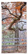 0981 Fall Colors At Starved Rock State Park Beach Towel