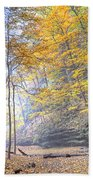 0983 Starved Rock Colors Beach Towel