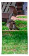 #01 Raccoon Race Beach Towel
