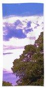 05222012003 Beach Towel