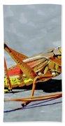 15- Lubber Grasshopper Beach Towel
