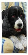 #940 D1031 Farmer Browns Springer Spaniel Beach Towel