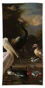 A Pelican And Other Birds Near A Pool, Known As The Floating Feather, Melchior D Hondecoeter, Beach Towel