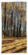 A Walk In The Woods Beach Towel