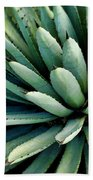 Agave Beach Towel