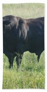 American Cow Beach Towel