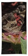 American Painted Lady Beach Towel