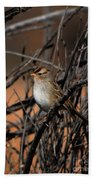 American Tree Sparrow Beach Towel