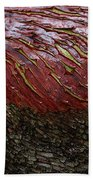 Arbutus Tree Bark Beach Towel