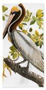 Audubon: Pelican Beach Towel