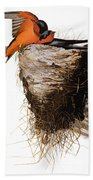 Audubon: Swallow Beach Towel