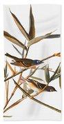 Audubon: Vireo Beach Towel
