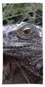 Australia - Kamodo Dragon Beach Towel