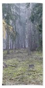 Autumn Coniferous Forest In The Morning Mist Beach Towel