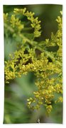 Autumn Goldenrod  Beach Towel