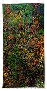 Autumn Hillside Blue Ridge Parkway Beach Towel