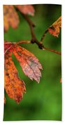 Autumn Leaves Beach Towel