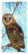 Barn Owl Beauty Beach Towel