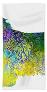 Bearder Collie-colorful Beach Sheet