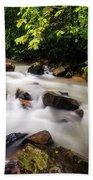 Beautiful Stream In Western Ghats Beach Towel