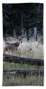 Big Buck Beach Towel