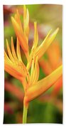 Bird Of Paradise Plant In The Garden. Beach Towel
